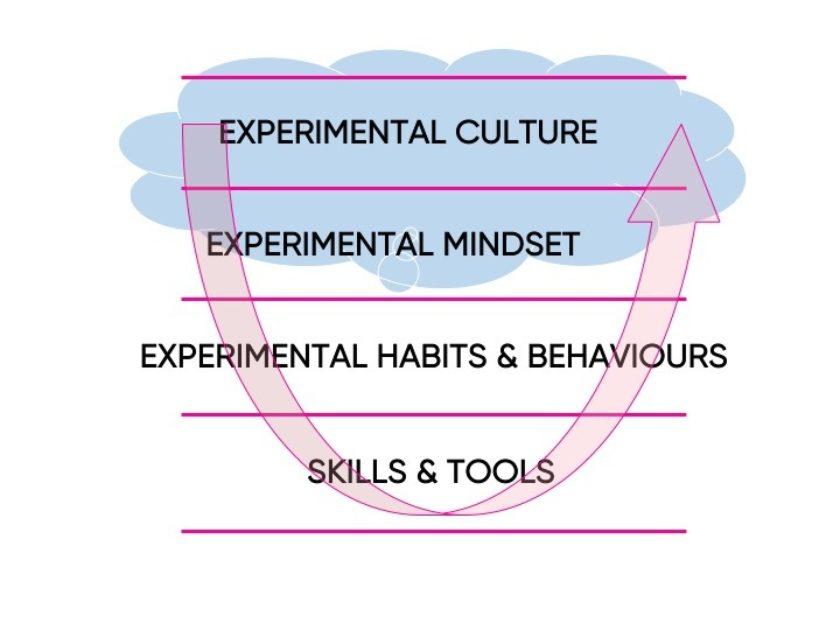 Experimental Mindset
